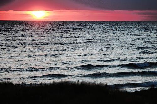 Základová fotografie zdarma na téma západ slunce, zlatý