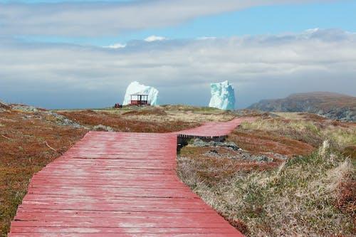 Základová fotografie zdarma na téma chodník, ledová kra, molo, oceán