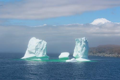 Základová fotografie zdarma na téma led, ledová kra, oceán, zima