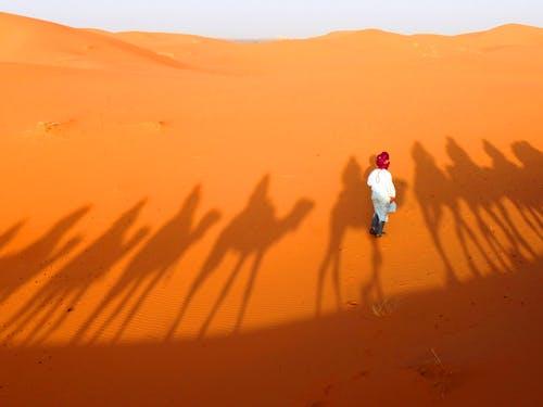Foto stok gratis bayangan, bukit pasir, gurun pasir, laki-laki