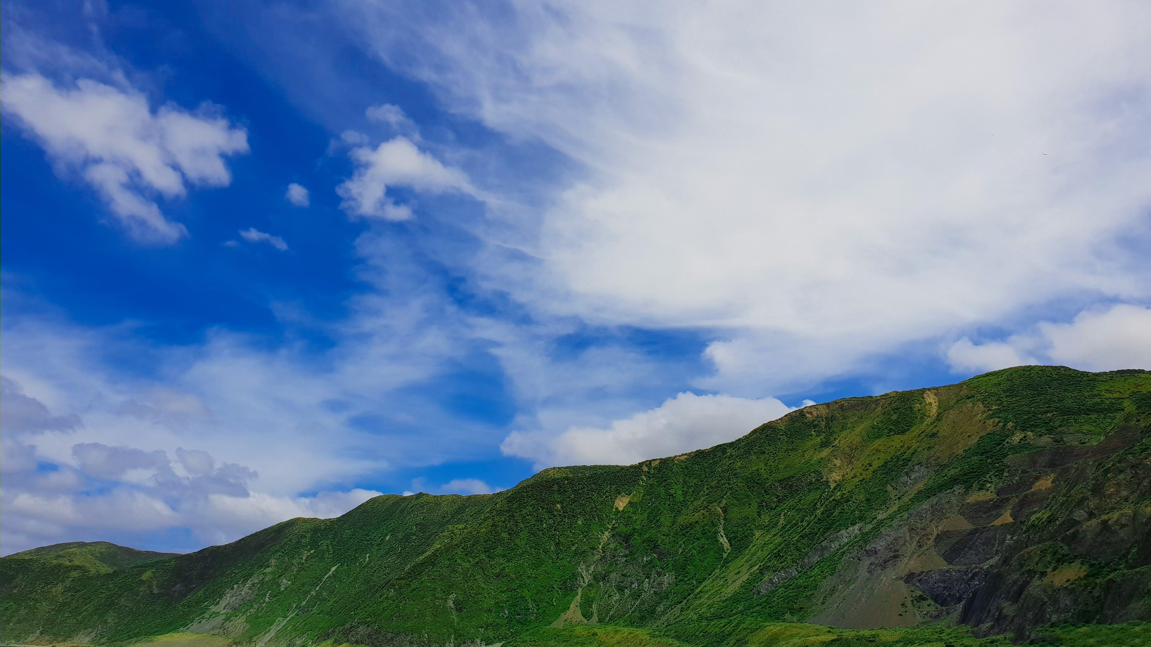 Kostenloses Stock Foto zu aufnahme von unten, blau, blauer himmel, grün