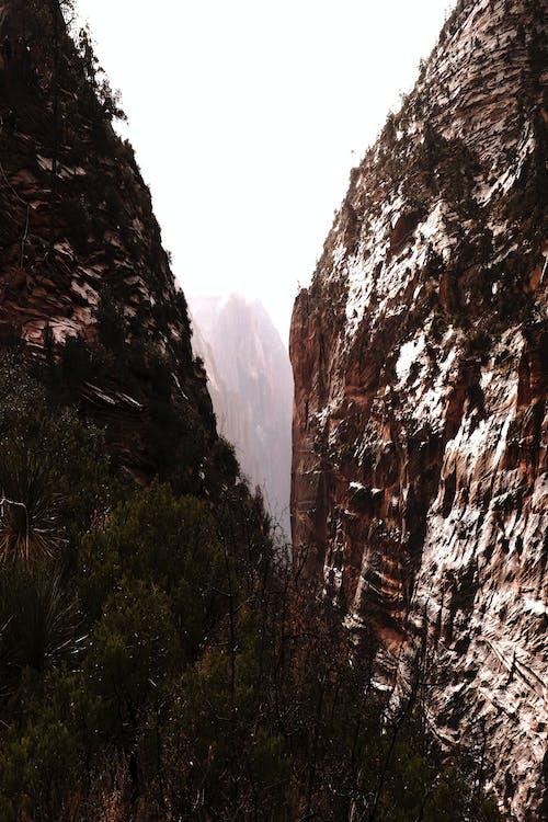 シオン, 冒険, 山岳, 旅行の無料の写真素材