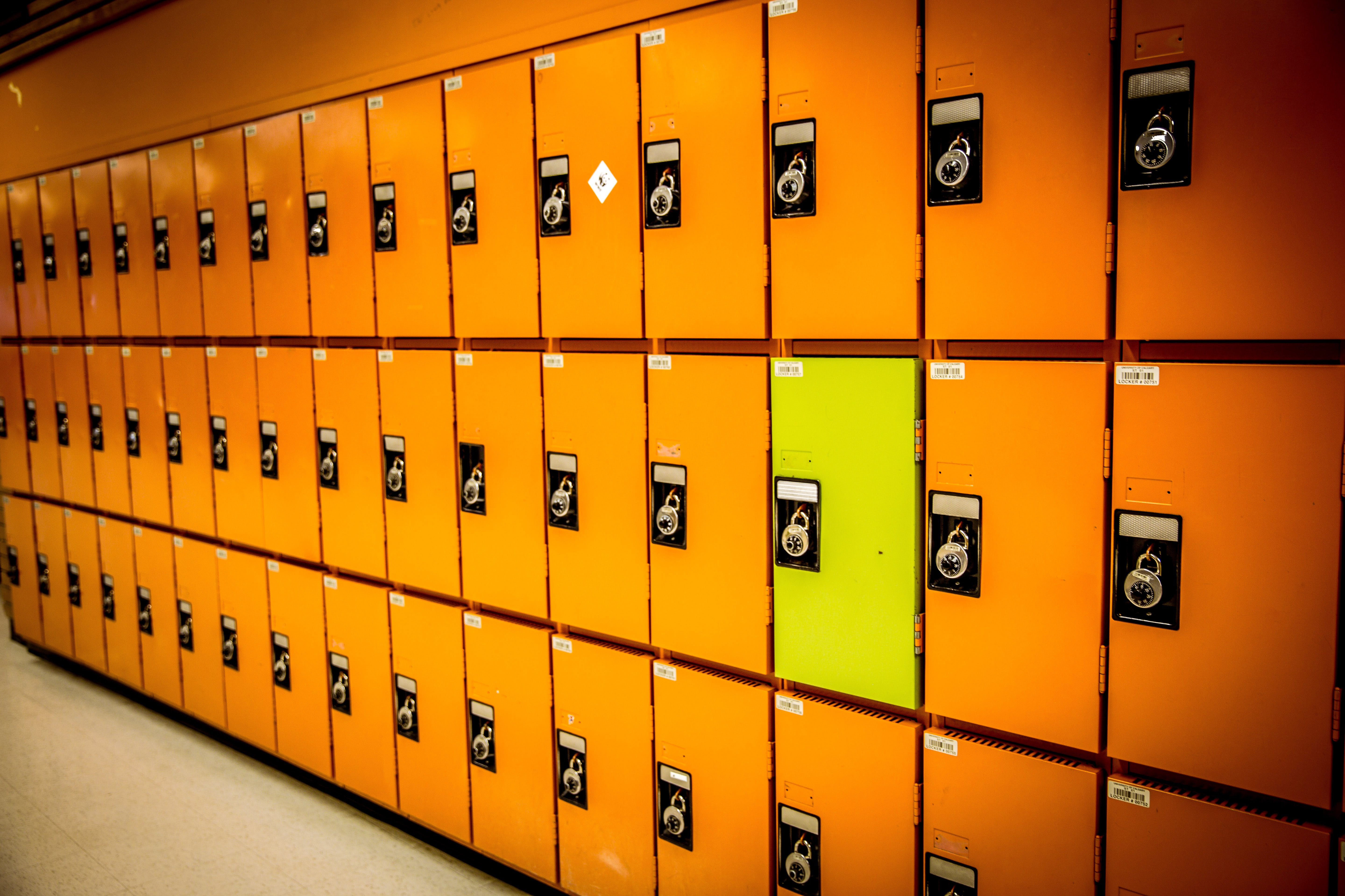 Free stock photo of different, education, lockers, odd