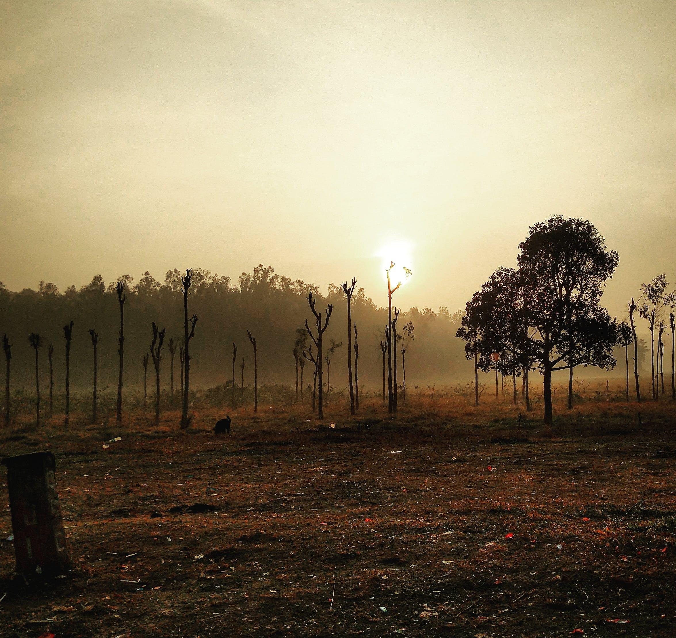 Photos gratuites de lever du soleil