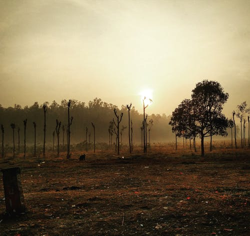 Free stock photo of sun rise