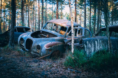Základová fotografie zdarma na téma auto, klasický, les, modrá