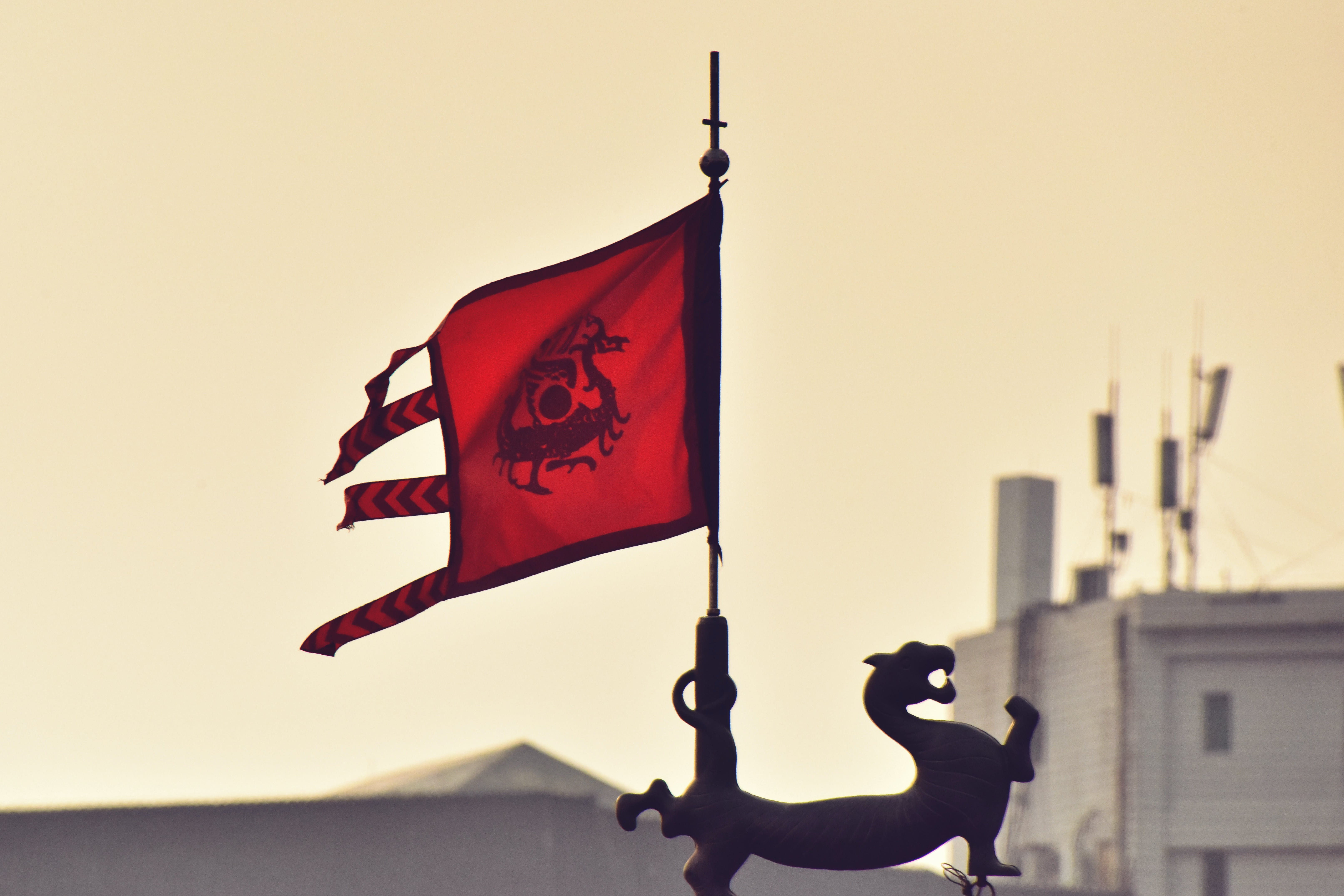 Free stock photo of Chinese culture, chinese tradition, dragon flag, flags