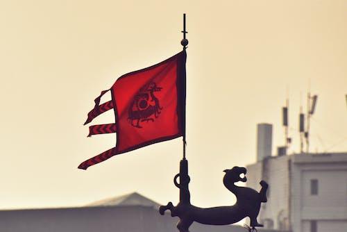 Photos gratuites de culture chinoise, drapeau de dragon, drapeau traditionnel, drapeaux