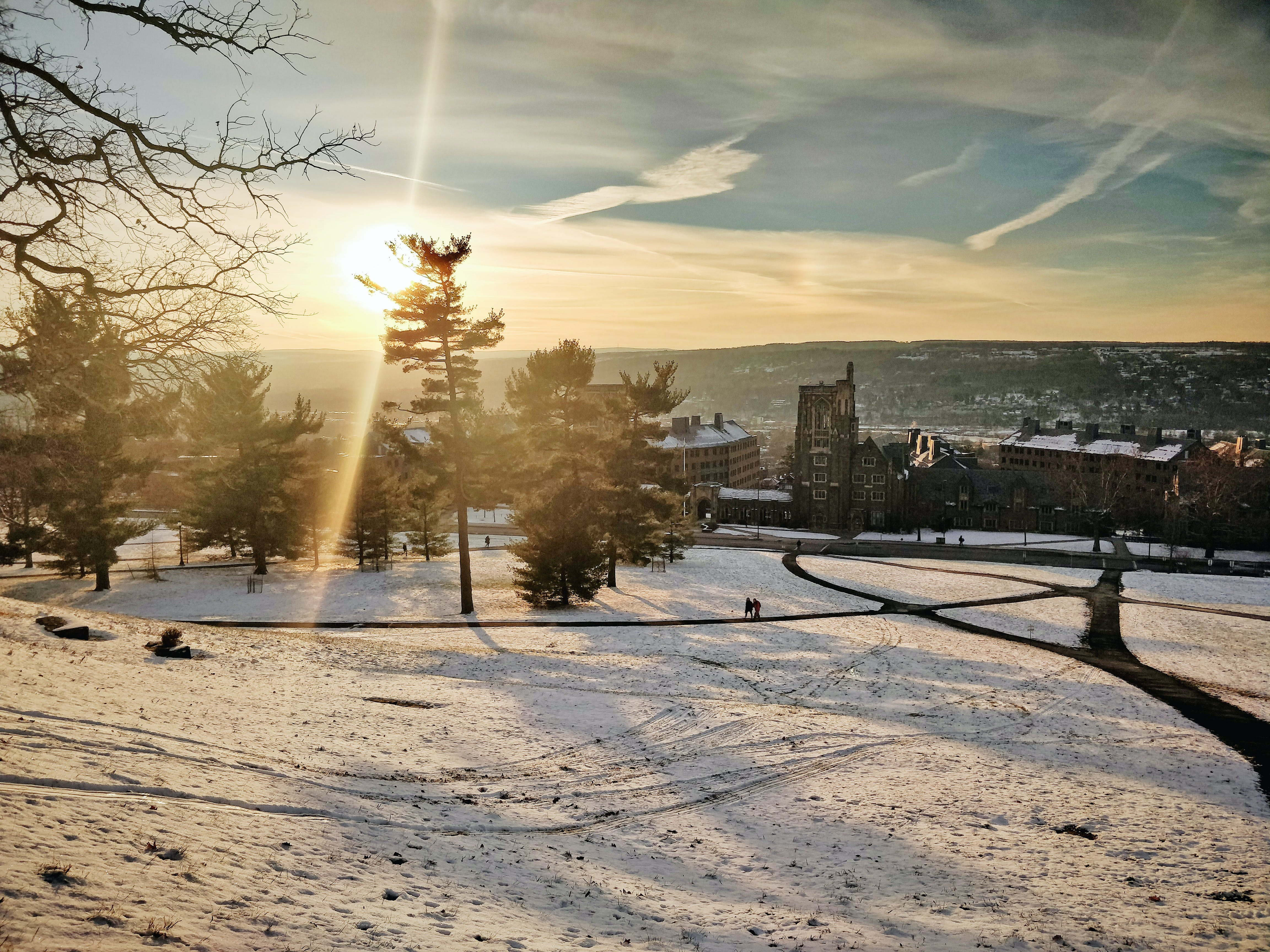 Free stock photo of cornell university, snow, winter view
