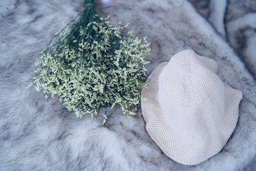 Photos gratuites de à fourrure, chapeau, drap, fleurs
