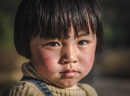 人, 兒童, 可愛, 可愛的 的 免費圖庫相片