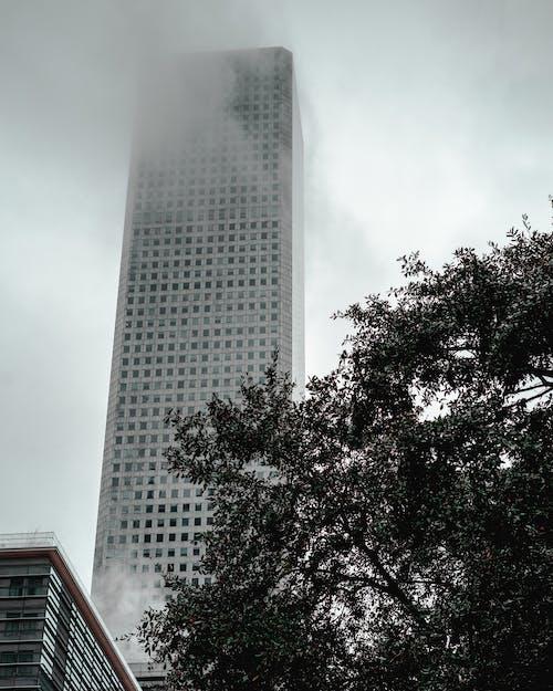 Бесплатное стоковое фото с архитектура, Архитектурное проектирование, высокий, горизонт