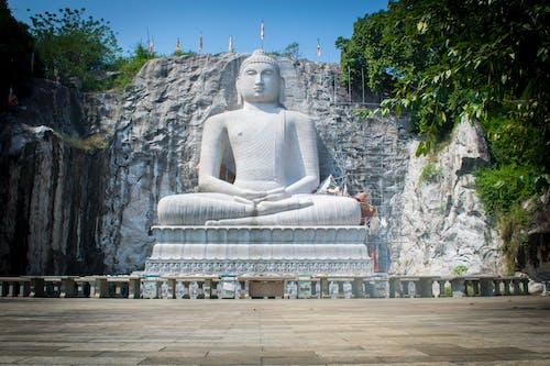 Základová fotografie zdarma na téma buddha