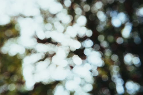 White and Brown Bokeh Light