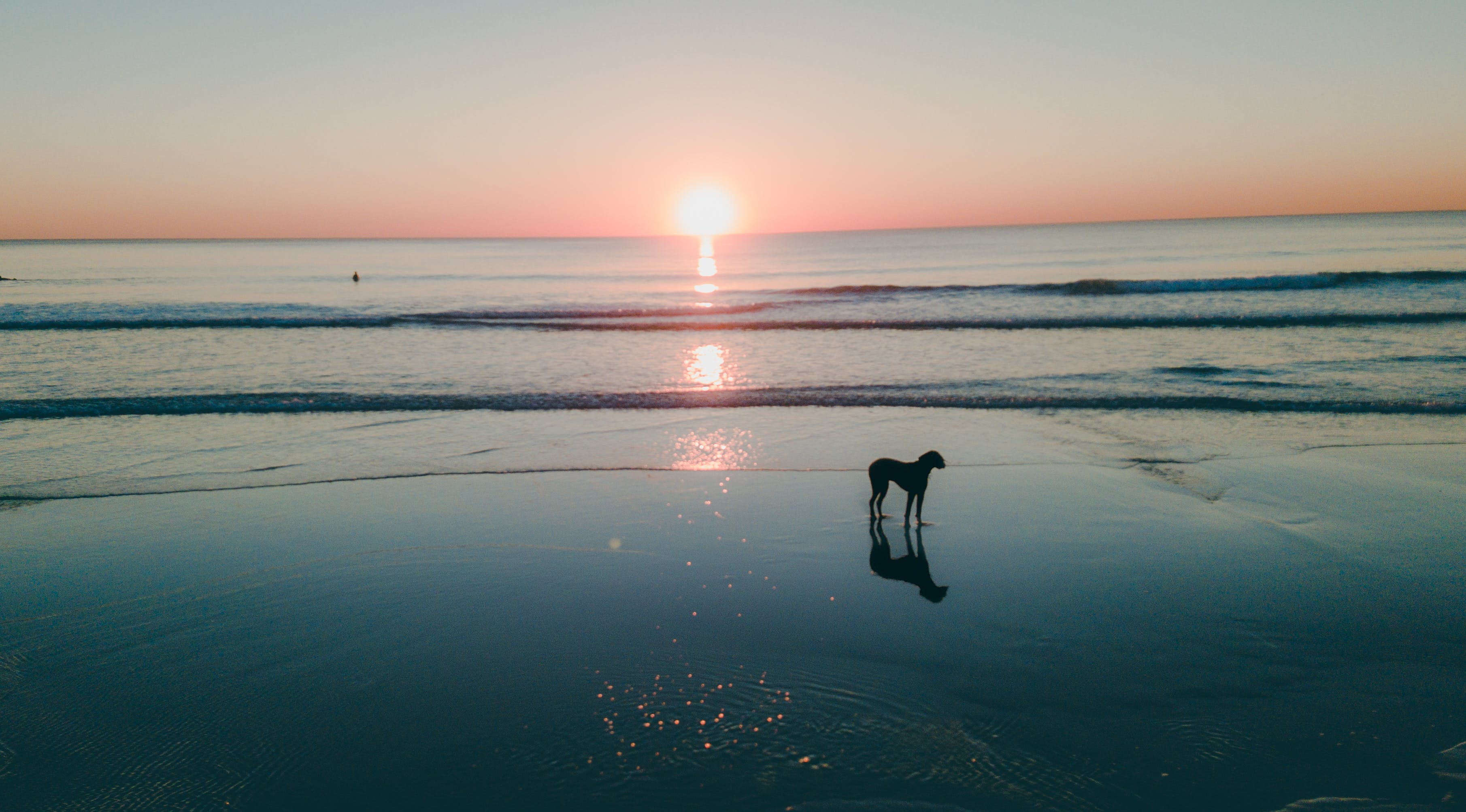 Fotos de stock gratuitas de amanecer, arena, cielo, costa