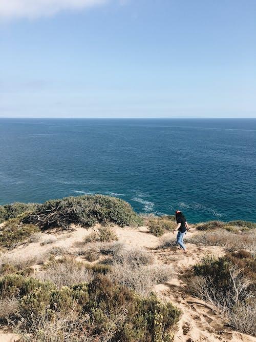 Бесплатное стоковое фото с вода, волны, горизонт, дневной свет