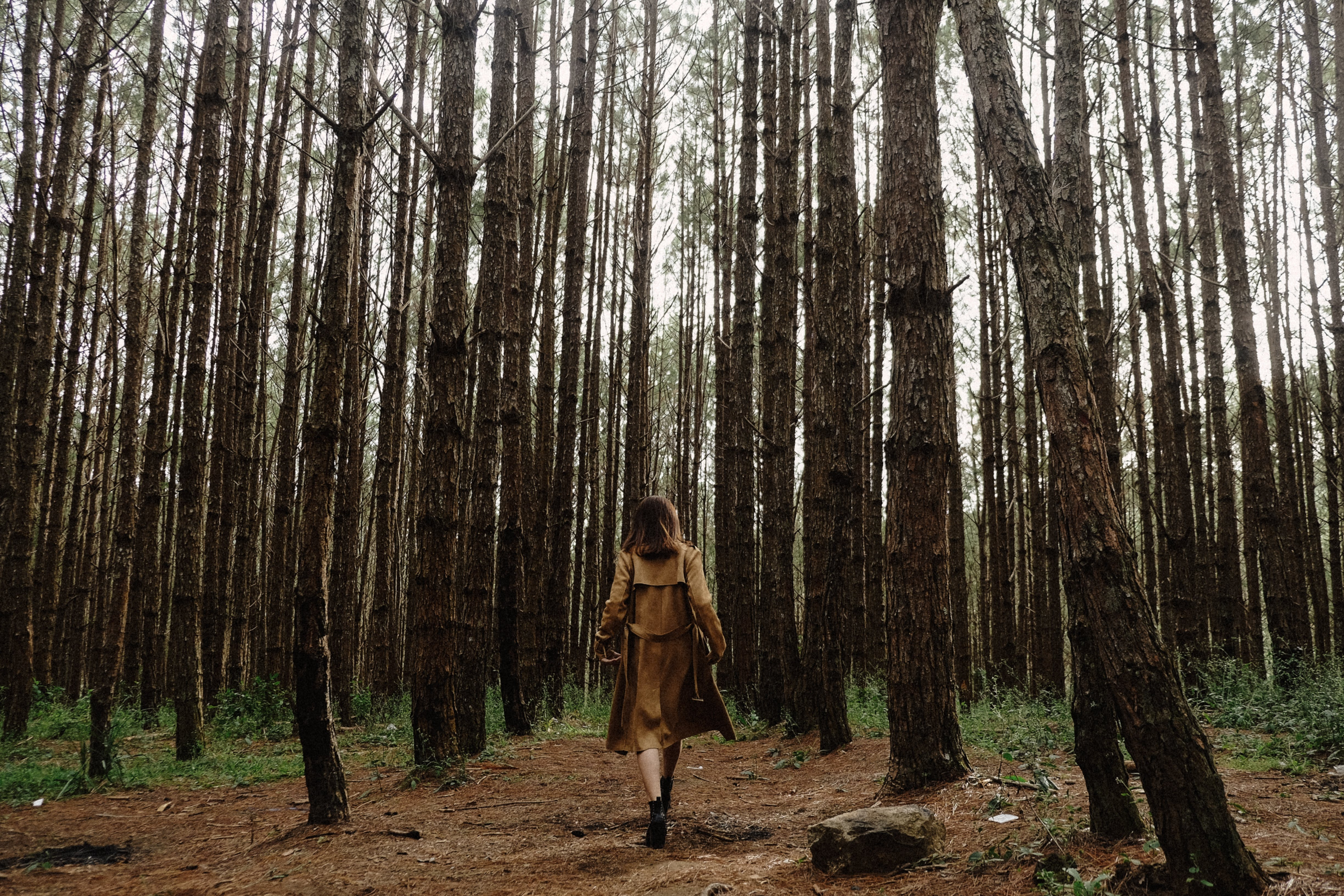 Woman In The Middle Of Forest