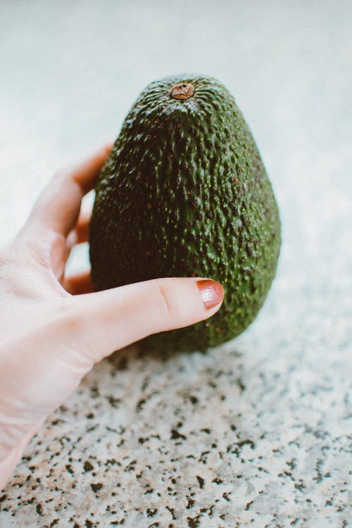Green Avocado Fruit