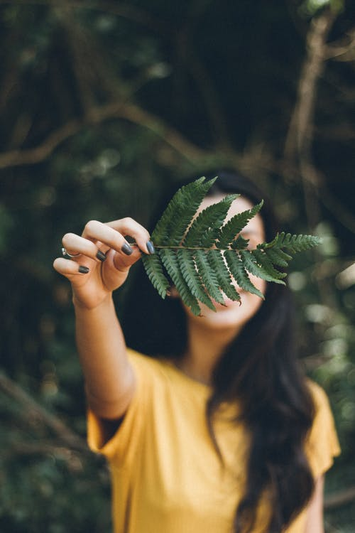Selective Focus Photography Of Woman Holding Leaf
