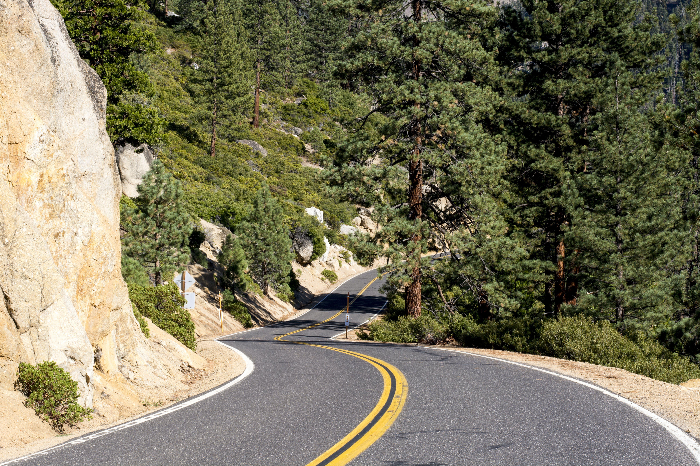 Highway Between Green Trees