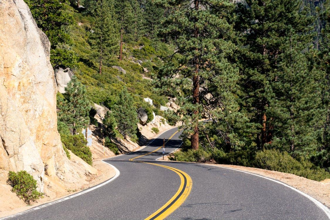 asfalt, dálnice, křivka