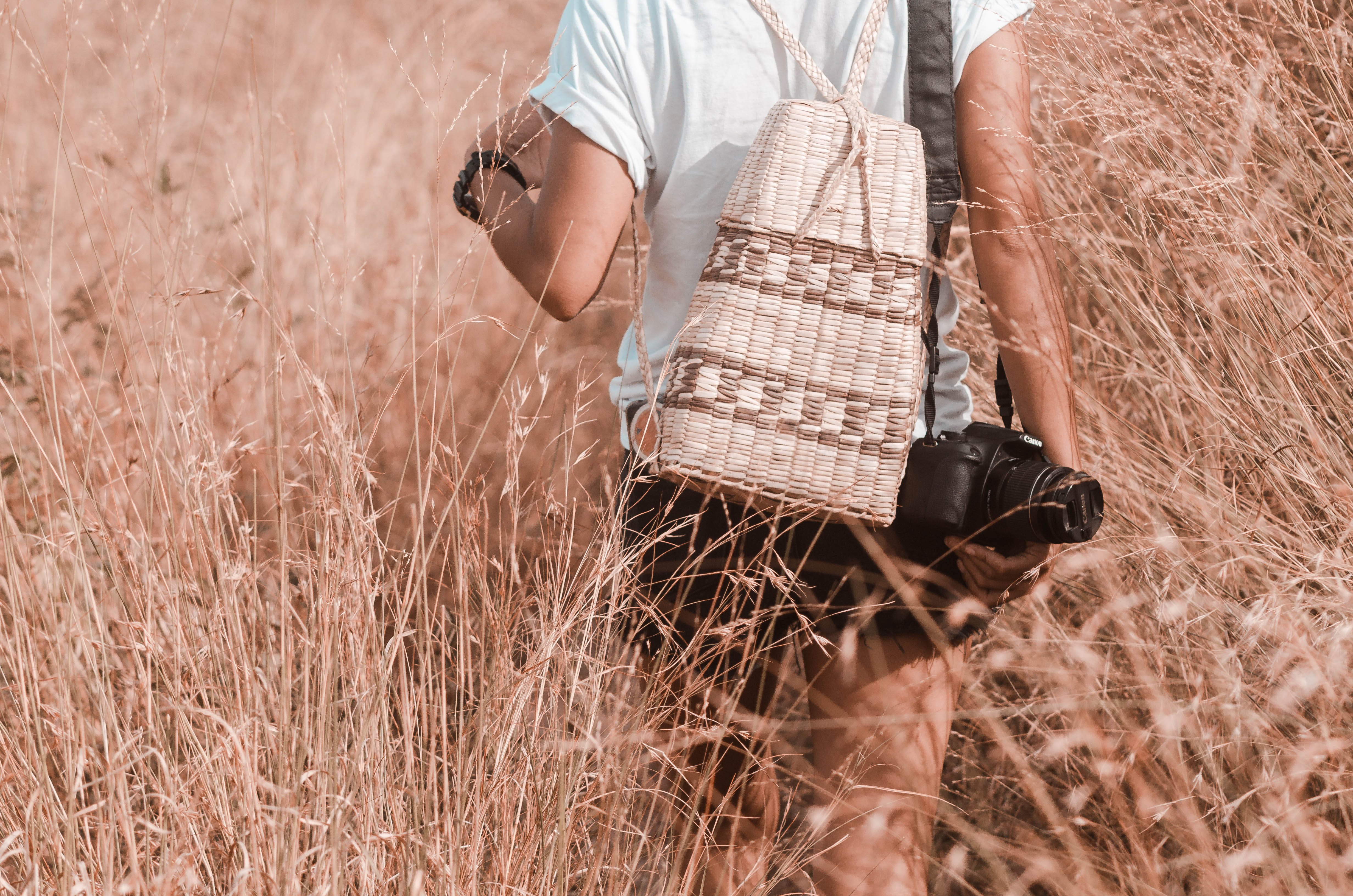 Free stock photo of adventure, bag, beauty in nature, nature background