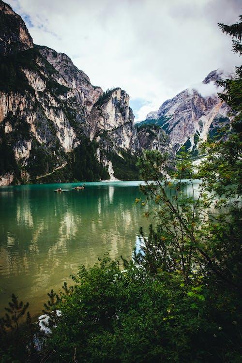 Alpok, ég, erdő