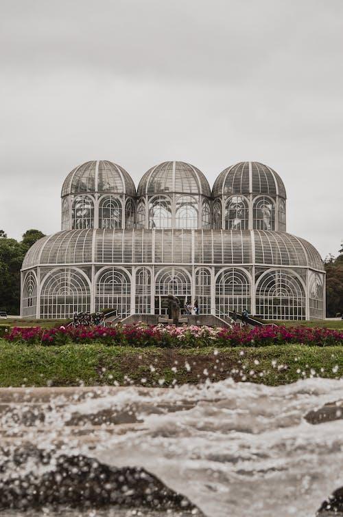 Foto d'estoc gratuïta de arquitectura, cúpula, estiu, flora