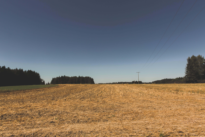 Základová fotografie zdarma na téma hřiště, idylický, malebný, obloha