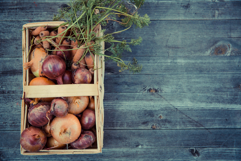 Kostenloses Stock Foto zu aufsicht, ernte, frisch, gemüse