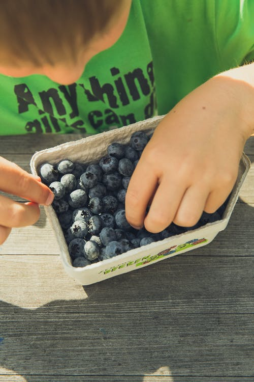 Free stock photo of agriculture, blueberry, business, child