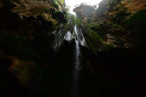 Foto d'estoc gratuïta de aigua, arbres, cascada, contrapicat