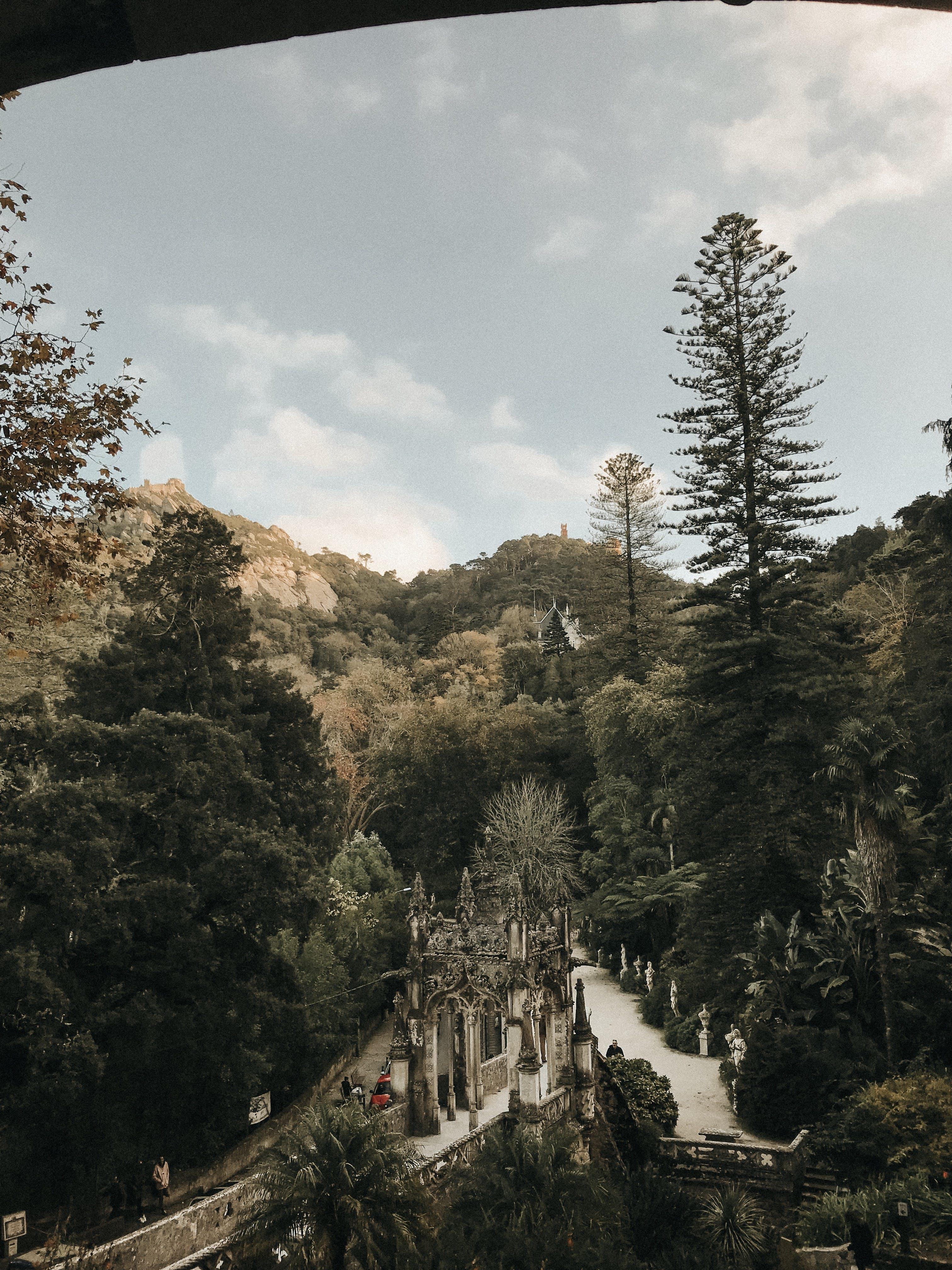 Kostenloses Stock Foto zu abenteuer, bäume, berg, himmel