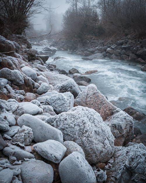 Foto profissional grátis de corrente, fluxo, natureza, pedras