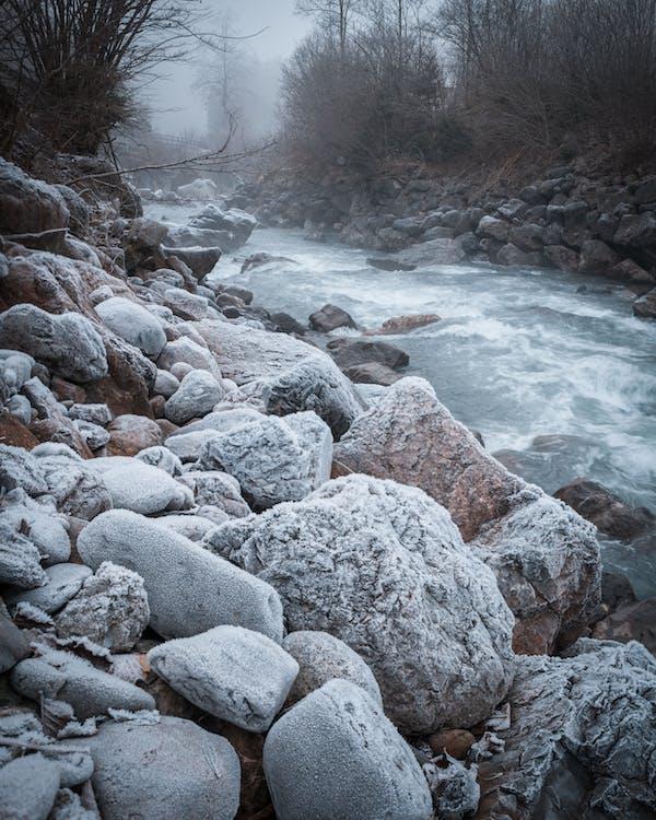 bäck, natur, stenar
