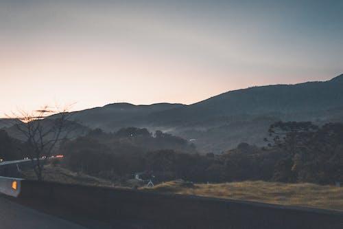 Free stock photo of road, sunrise