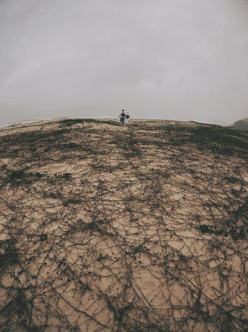 Δωρεάν στοκ φωτογραφιών με άνδρας, άνθρωπος, βουνό, γραφικός