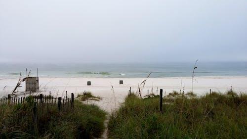 Photos gratuites de ciel, herbe, plage, surf