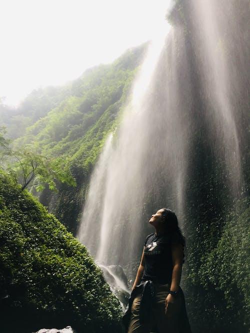 Бесплатное стоковое фото с madakaripura, бром, водопады, восточная ява