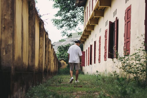 Безкоштовне стокове фото на тему «Windows, Будівля, Деревина, людина»