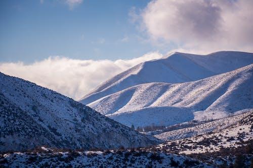 Imagine de stoc gratuită din altitudine, arbori, banchiză, cer