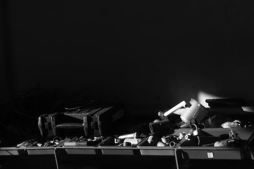 Foto d'estoc gratuïta de la vida en blanc i negre
