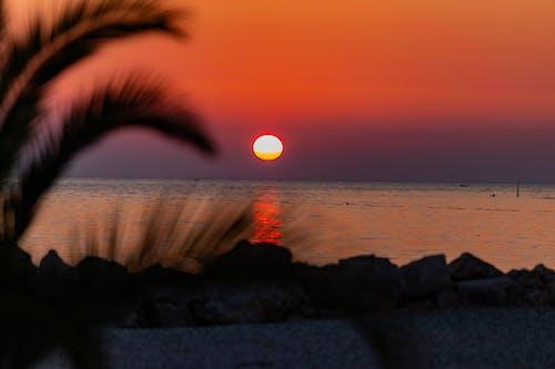 Imagine de stoc gratuită din apus, plaja de soare