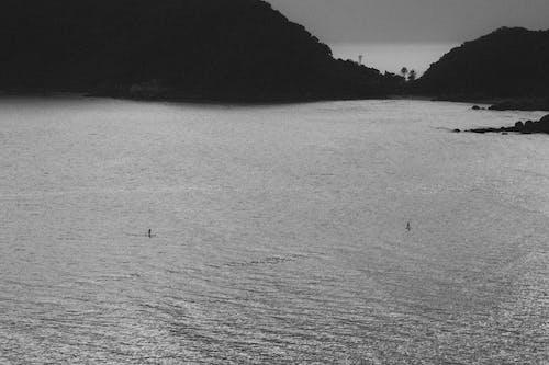 サーフィン, 山, 海の無料の写真素材