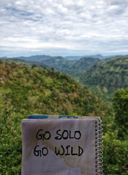 Free stock photo of go solo go wild, green, hillside