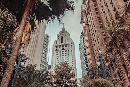 Ilmainen kuvapankkikuva tunnisteilla arkkitehtuuri, kaupunki, perspektiivi, rakennukset