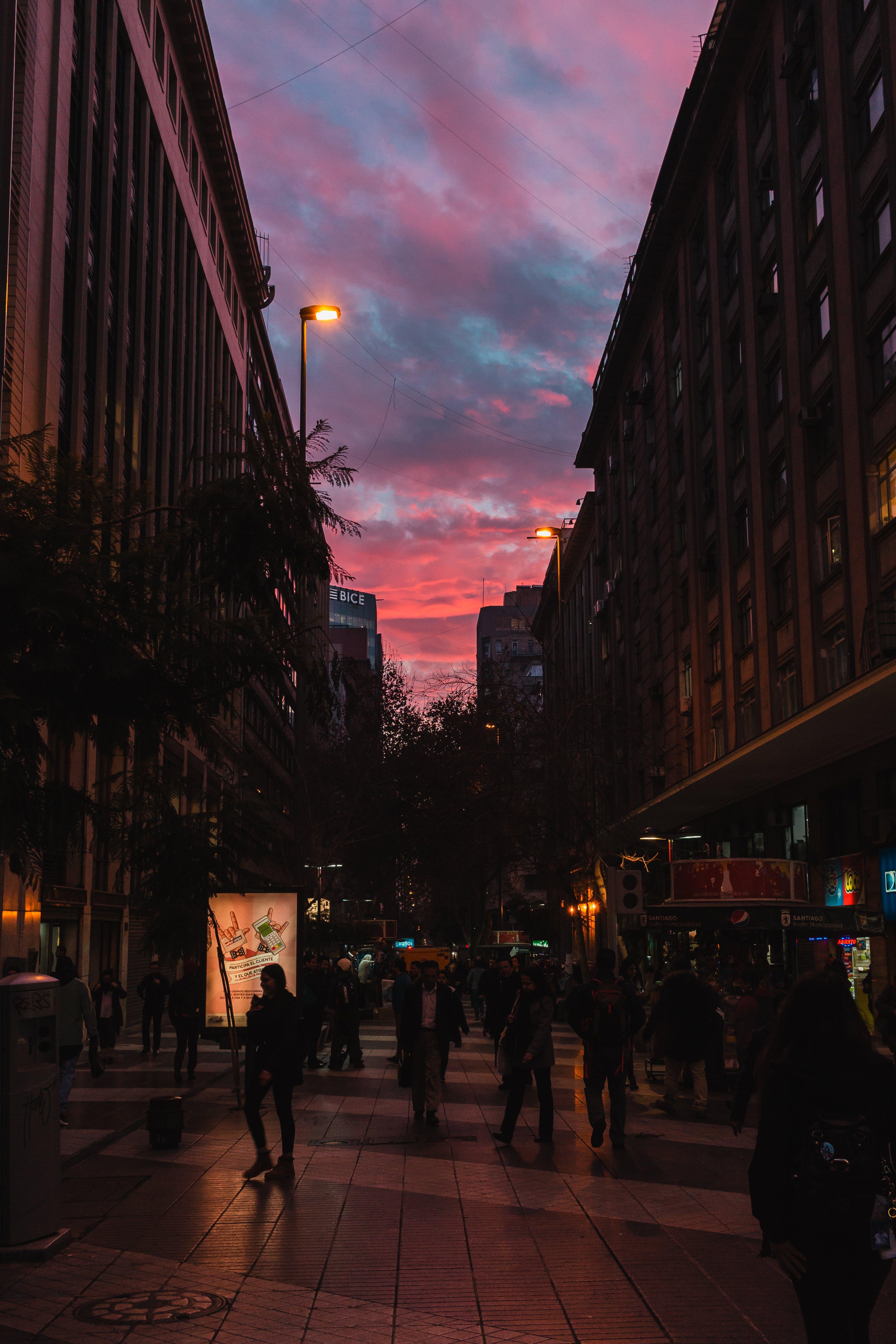 シティ, 人, 商取引, 夕方の無料の写真素材