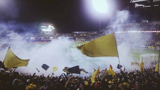 Free stock photo of people, field, flags, yellow