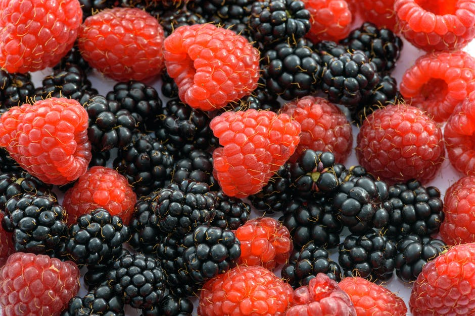 berries, berry, blackberries