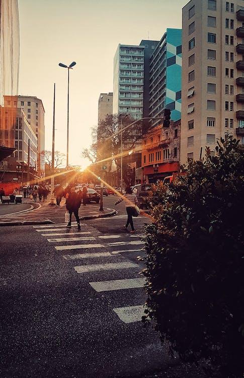 città, luce del sole, persone d'affari